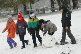 Pierwszy śnieg we Wrocławiu. Pługi w gotowości [ZDJĘCIA, MAPA]