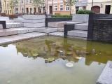 Dlaczego nowa fontanna na Psim Polu już nie działa?
