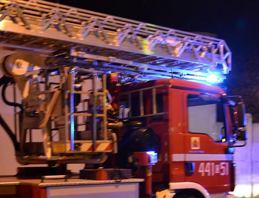 Akcja strażaków w nocy w czwartek zakończyła się szybko. Pożar drzewa został ugaszony błyskawicznie.