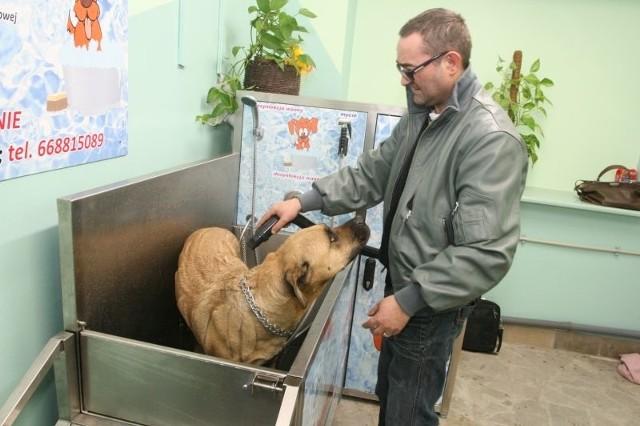 """Tomasz Paduch, właściciel i główny pomysłodawca sieci myjni dla psów pokazuję próbkę kąpieli na przykładzie swojego czworonoga, suczki """"Pusi"""""""