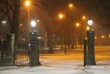 Zima w Tarnobrzegu. To bestia ze Wschodu nadciąga? (ZDJĘCIA)
