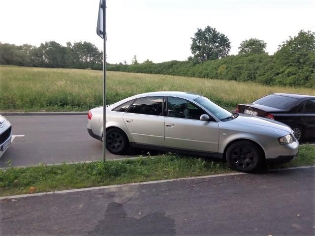Tak wyglądało parkowanie nad Jeziorem Tarnobrzeskim w niedzielę 20 czerwca.