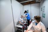 Certyfikat szczepień obowiązkowy w pracy? Jak to wygląda w Toruniu?
