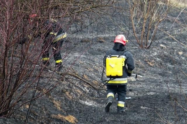 Dziś pożary traw to problem okolic dużych miast i osiedli mieszkaniowych