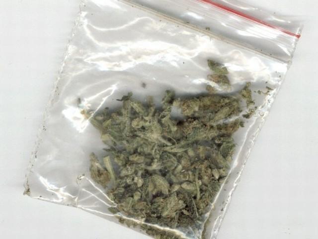 Przy jednym z mężczyzn ujawniono woreczek foliowy z suszem roślinnym koloru zielonego