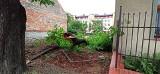 Kraków. Chwile grozy na osiedlu Podwawelskim. Huragan zniszczył nie tylko balon [ZDJĘCIA]
