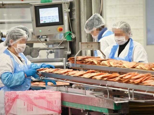 Inspektorzy weterynaryjni sprawdzają, czy pracownicy Morpolu wypuścili na rynek przeterminowaną rybę.