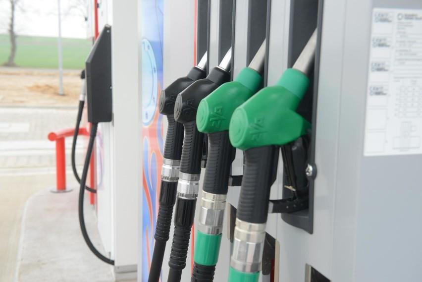 Duży wkład do inflacji ma wzrost cen paliw (28,1% r/r, 3,6%...