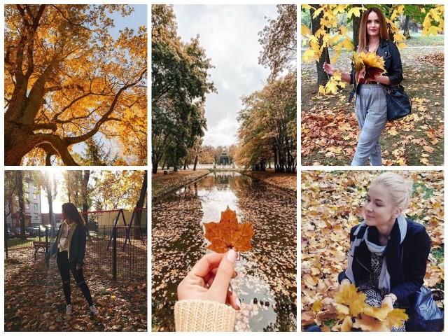 Jesień to coraz krótsze dni, niższe temperatury i zbliżająca się zima? Nie tylko. O tej porze roku natura maluje krajobraz wyjątkowymi barwami. Sprawdźcie, jak zrobiła to ze stolicą województwa.Na urządzeniach mobilnych przewiniesz zdjęcia przesuwając palcem po ekranie lub klikając w strzałki.