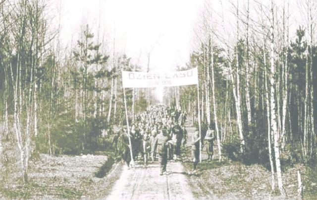 Dzień Lasu w Białowieży w 1936 roku.