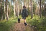 Mandat za spacer z psem bez smyczy. Uwaga, zmieniły się przepisy. Posiadacze psów muszą je znać