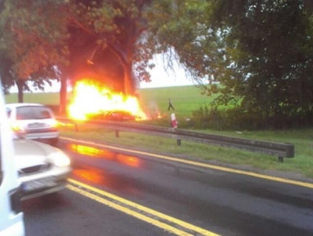 """Na krajowej """"trójce"""" bmw uderzyło w przydrożne drzewo i stanęło w płomieniach."""