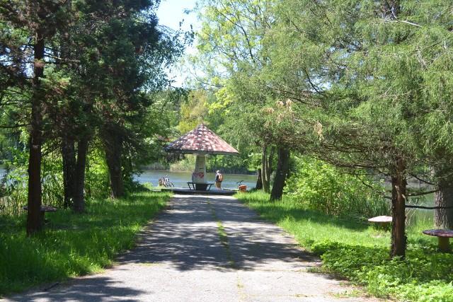 Jeden z projektów dotyczy Parku Kuronia. Deszczówka z zapadliska ma być kierowana do betonowej nerki