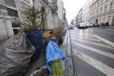 Choinki na chodnikach, przy drogach i pod bramami - poznaniacy pozbywają się świątecznych drzewek