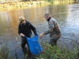 Katastrofa ekologiczna: Nikt nie wie, co zabiło rzekę