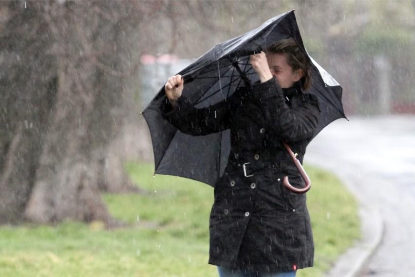 """Niewielki deszcz i wiatr w niedzielny poranek we Wrocławiu. Pogoda nieco gorsza niż wczoraj, ale synoptycy ostrzegają, że to taka """"cisza przed burzą"""". Klasycznej burzy, jaka znamy z okresu wiosennego i letniego nie będzie, ale trzeba się przygotować na fatalne warunki pogodowe. W ciągu zaledwie kilku godzin w niedzielny wieczór i noc z niedzieli nad poniedziałek nad Polską przejdzie niż powodujący bardzo silny wiatr i opady deszczu. Lepiej w tym czasie pozostać w domu.CZYTAJ WIĘCEJ, SPRAWDŹ MAPY I OSTRZEŻENIA ORAZ ICH WAŻNOŚĆ NA KOLEJNYCH SLAJDACH. PORUSZAJ SIĘ PO GALERII PRZY POMOCY STRZAŁEK LUB GESTÓW NA TELEFONIE."""