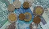 Ile zarabia się w Lidlu? Pensje pracowników należą do jednych z największych w branży spożywczej