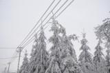 Awaria prądu w regionie koszalińskim. Sprawdź gdzie i do kiedy nie będzie energii