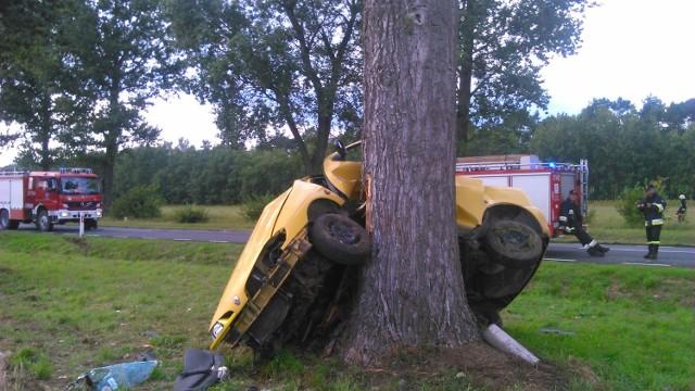 Samochód zawiesił się na drzewie