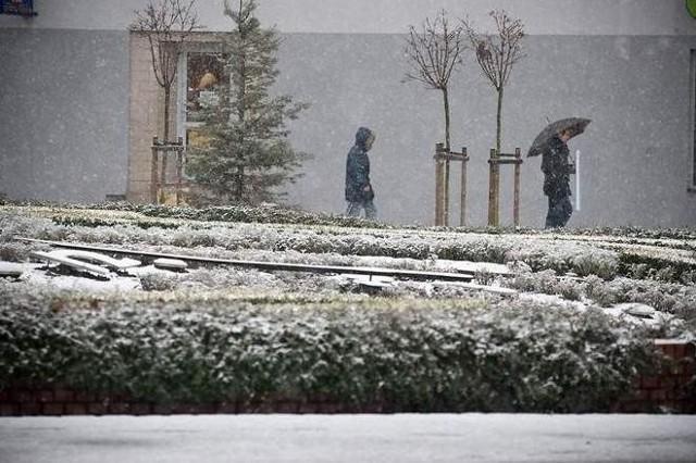 Śnieg prószyć będzie tylko przelotnie