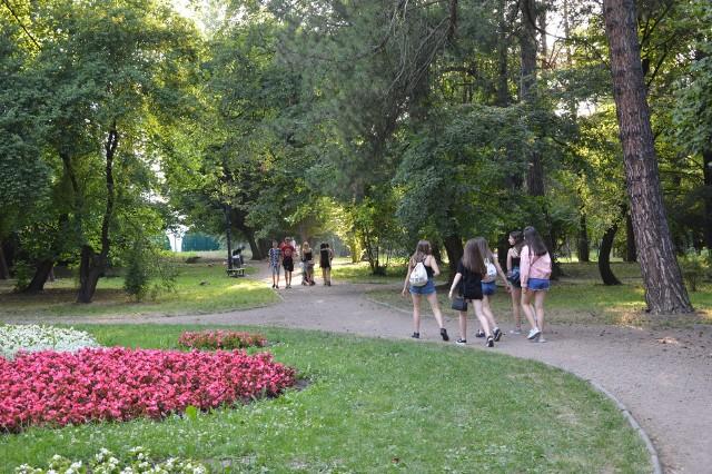 Miejski Obszar Zdrowia zaprojektowano w Parku Mickiewicza i jego okolicy, na terenie o łącznej powierzchni ponad 8 ha