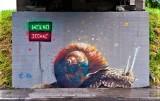 Nowy Sącz. Serial Mgr Morsa na ulicy Węgierskiej. Zobacz przegląd niezwykłych murali