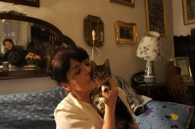 Elżbieta: – Koty uratowały mnie, kiedy byłam chora na nerki.