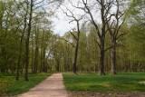 Wrocław: Park na Żernikach jednak powstanie. Jest wykonawca