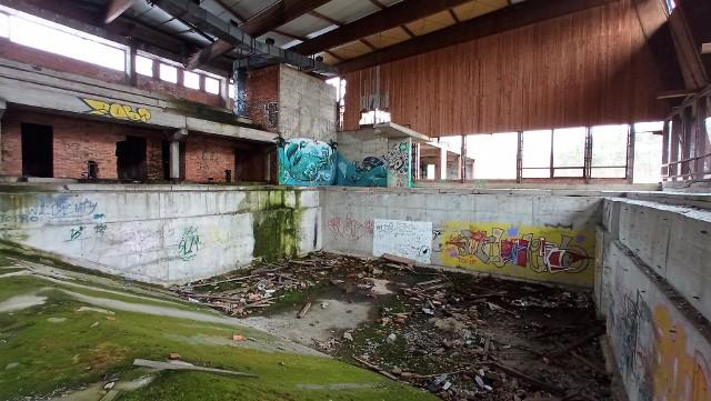 Opuszczony basen w Ozimku. Zabrakło ośmiu miesięcy do ukończenia budowy. Teraz to ruina.