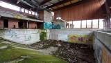 Ozimek. Opuszczony basen miał być perełką huty Małapanew. Zabrakło ośmiu miesięcy do ukończenia budowy. Teraz to ruina [ZDJĘCIA]