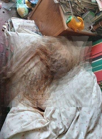 Służby w mieszkaniu przy ulicy Gagarina ujawniły ciało martwej kobiety.