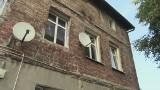 Agresywny pies pogryzł cztery osoby w Poznaniu [wideo]