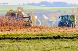 Grupy producentów rolnych mogą dostać nawet 100 tys. euro. Opłaca się działać razem