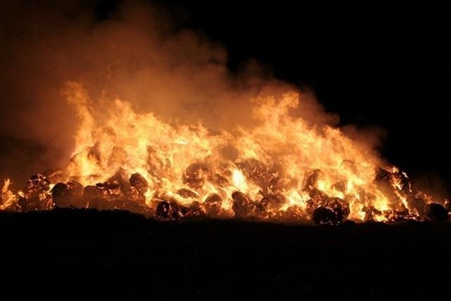 Strażacy przyjeżdżający do pożarów oraz dochodzeniowy z policji, którzy ustalali przyczyny powstania ognia, nie mieli wątpliwości, że były to podpalenia.