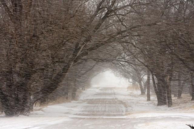 Fatalne warunki na lubuskich drogach. Śnieg może padać jeszcze przez kilka nocnych godzin.