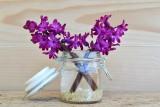 Piękne dekoracje wiosenne: kwiaty w doniczkach i wazonach
