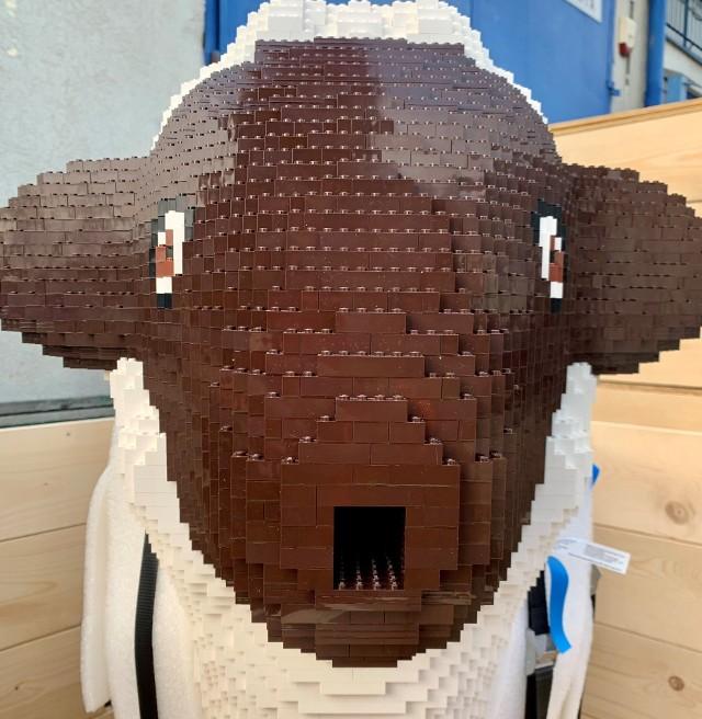 Owca z klocków Lego, która stanie w sobotę, 21 listopada, obok Smoka Wawelskiego, waży aż 62 kilogramy