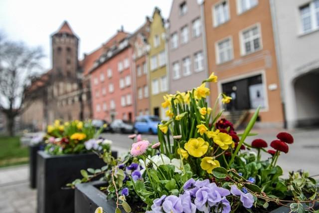 Wiosna w Gdańsku