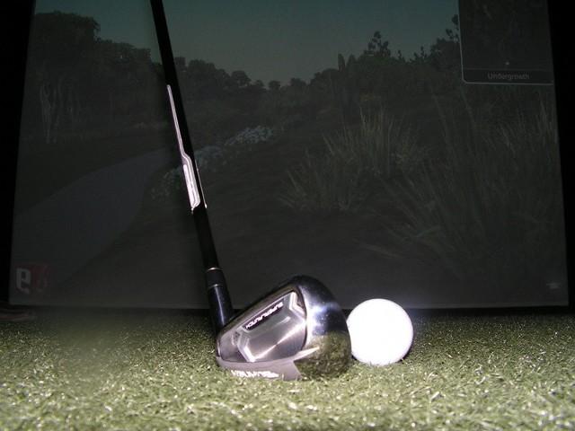 Na razie do dyspozycji wielbicieli golfa jest symulator przy ul. Teatralnej.