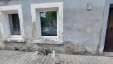 Morderstwo w Lubsku. Przed oknem domu, gdzie doszło do zbrodni, płoną znicze. Mieszkańcy Lubska są zszokowani tym, co się stało
