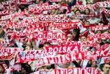 Kibice z trybun obejrzą mecze reprezentacji Polski przed Euro 2020. PZPN ustalił ceny
