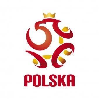 W meczu towarzyskim rozegranym w Krakowie reprezentacja Polski pokonała reprezentację Liechtensteinu.