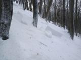 Z Cergowej w Beskidzie Niskim schodzą lawiny. GOPR i leśnicy ostrzegają turystów wędrujących żółtym szlakiem z Dukli