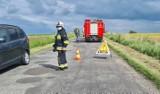 Śmiertelny wypadek na drodze między Ciepłowodami i Starym Henrykowem