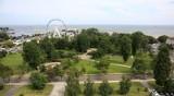 Gdyński samorząd niedługo zadecyduje o przyszłości Parku Rady Europy. Społecznicy chcą szerokich konsultacji społecznych