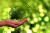 Lafarge dla regionu: Nagrody dla szkoły, uczniów i nauczyciela za ekoedukację