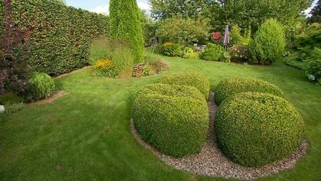 Zielone głazy w ogrodzieTakie zielone głazy można wykonać z bukszpanów. Na jeden kamień przypada 10 sadzonek.