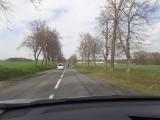 Koń biegał po drodze wojewódzkiej 704 między Brzezinami i Kołacinem. Kierowcy musieli zwalniać