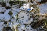 Pogoda na wiosnę 2021. Pogoda długoterminowa nas pocieszy? Kiedy przyjdzie wiosna i zrobi się ciepło? Sprawdź