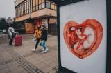 Plakaty z dzieckiem w sercu skłóciły Polskę. Dlaczego? Śląska fundacja zarzuciła kraj tysiącami billboardów promujących hospicja perinatalne